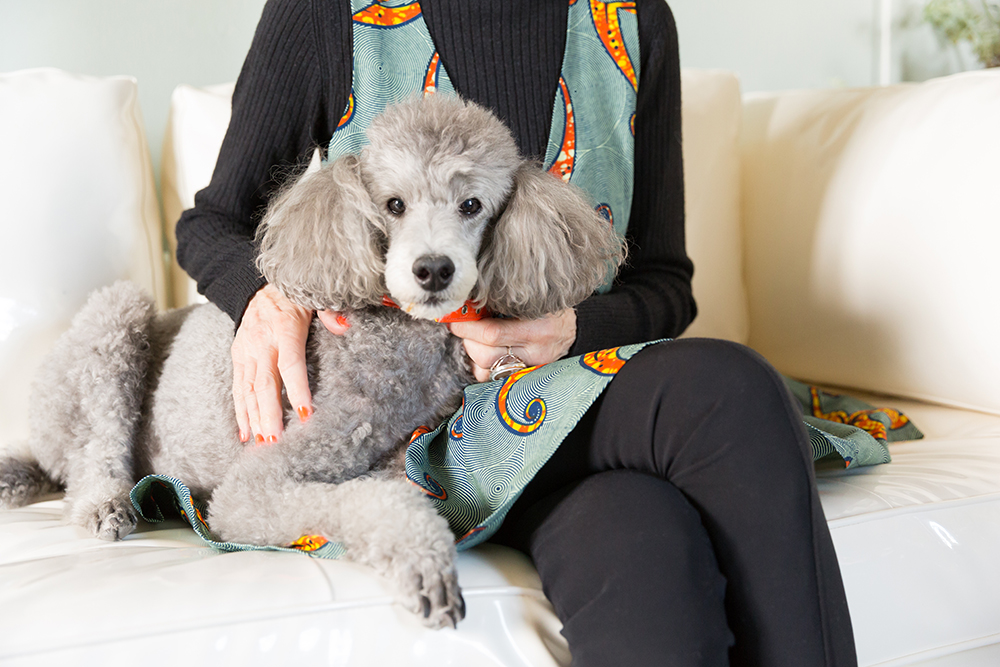 Linda's beloved poodle Winky.